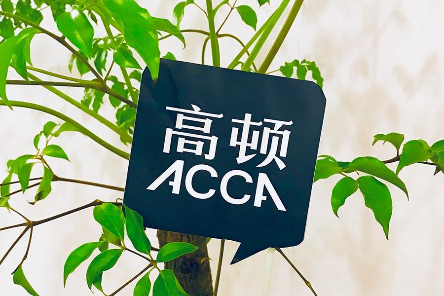 全国有哪些大学有ACCA专业?